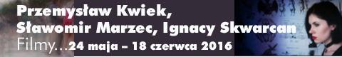 Galeria xx1 - Przemysław Kwiek, Sławomir Marzec, <br>Ignacy Skwarcan   &#8222;Filmy&#8230;&#8221;