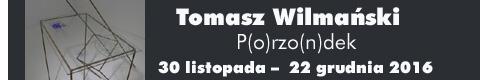 Galeria xx1 - TOMASZ WILMAŃSKI P(O)RZO(N)DEK