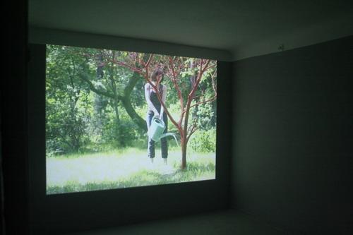 Marta Szulc, Homeland, Galeria XX1