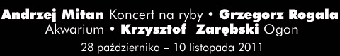 Galeria xx1 - Andrzej Mitan Koncert na ryby; Grzegorz Rogala Akwarium; Krzysztof Zarębski Ogon