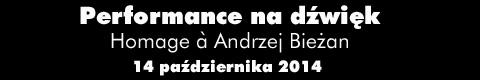 Galeria xx1 - Performance na dźwięk. <br>Hommage a Andrzej Bieżan